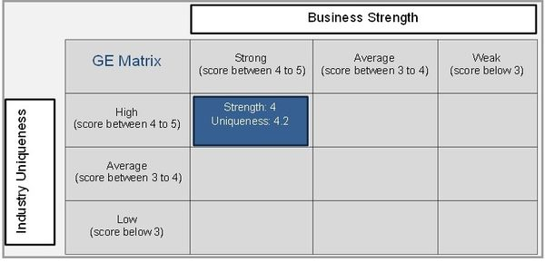 What Is The Ge Strategic Business Unit Sbu Matrix